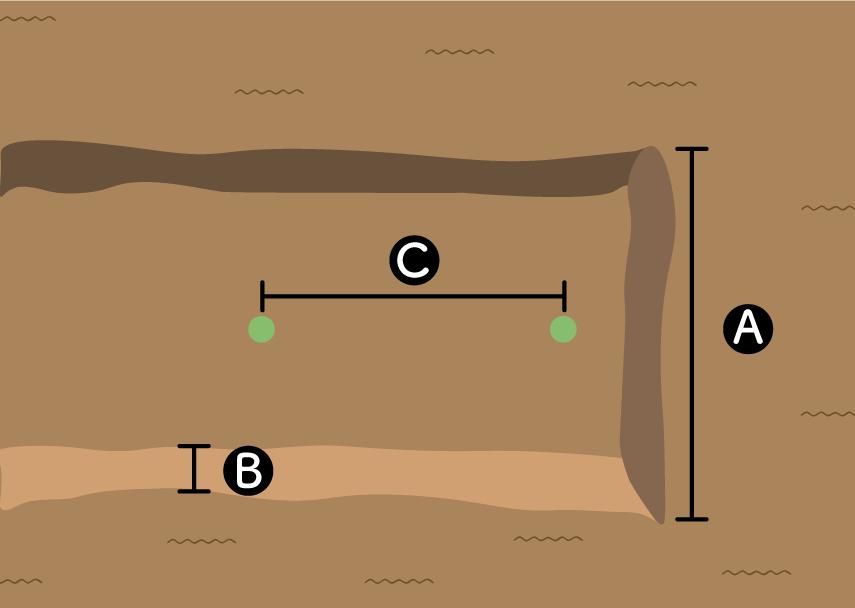 カボチャ栽培のための畝の大きさ