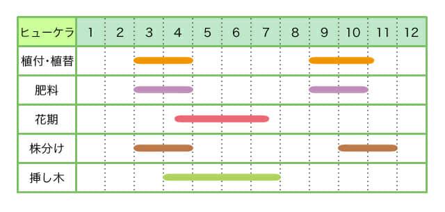 ヒューケラ、育て方、栽培カレンダー