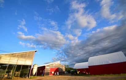 酪農家の敷地に建つ建物