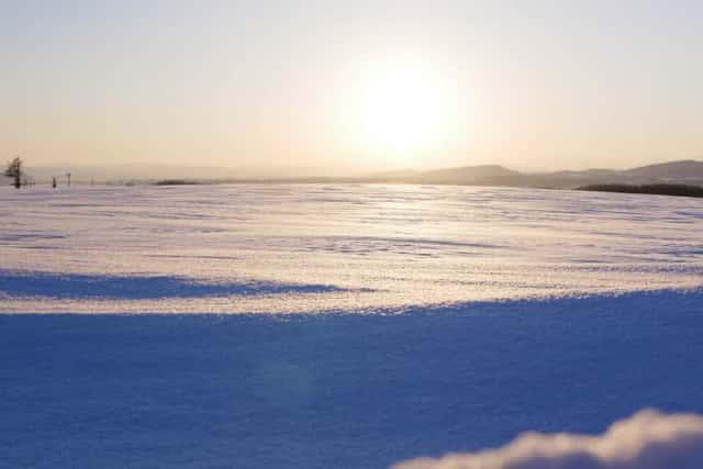 真冬の北海道の圃場