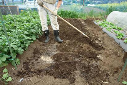 ぼかしや草木灰をレーキで土に混ぜ込む