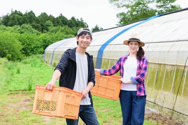 新規就農をした夫婦のイメージ
