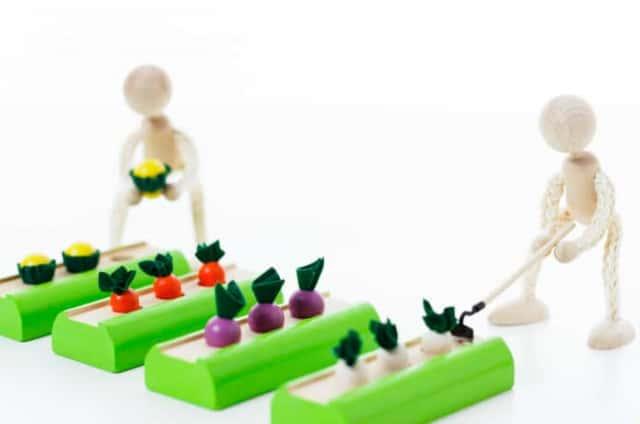 野菜を育てる模型