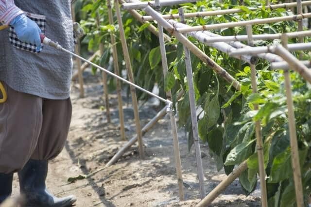 農薬 散布