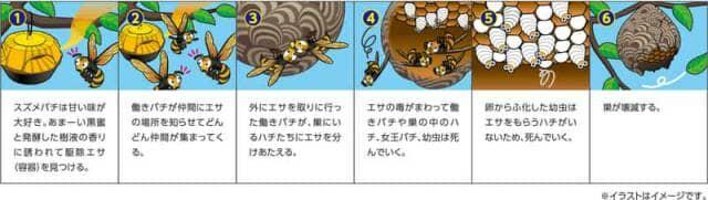 スズメバチ駆除剤の説明