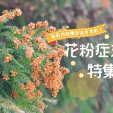 花粉症特集バナー