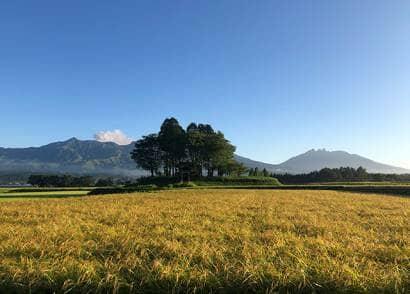 阿蘇の田畑や山
