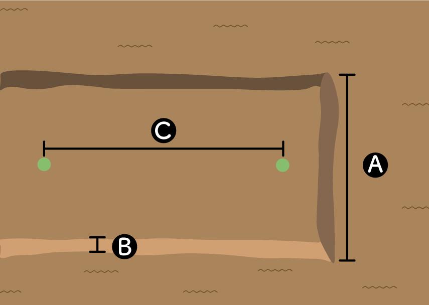 トウガンの畝の作り方