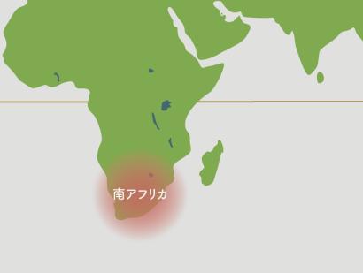ストレリチア原産地の地図