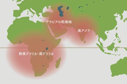 サンセベリアの原産地地図