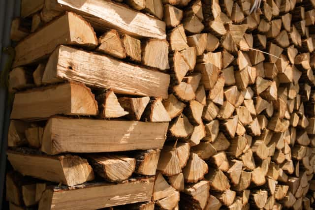 原料の木材