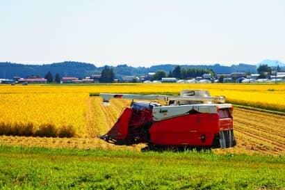 稲刈り中のコンバイン