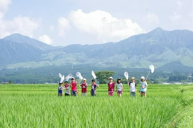 田んぼの中に立つ子どもたち