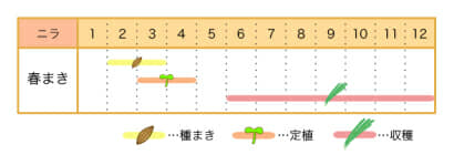 家庭菜園カレンダー ニラ