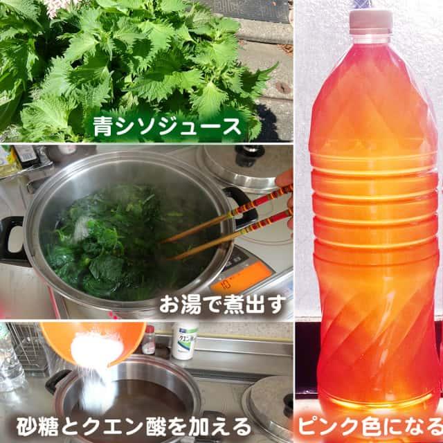 青シソジュースの作り方