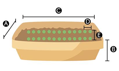 ルッコラのプランターでの植え方