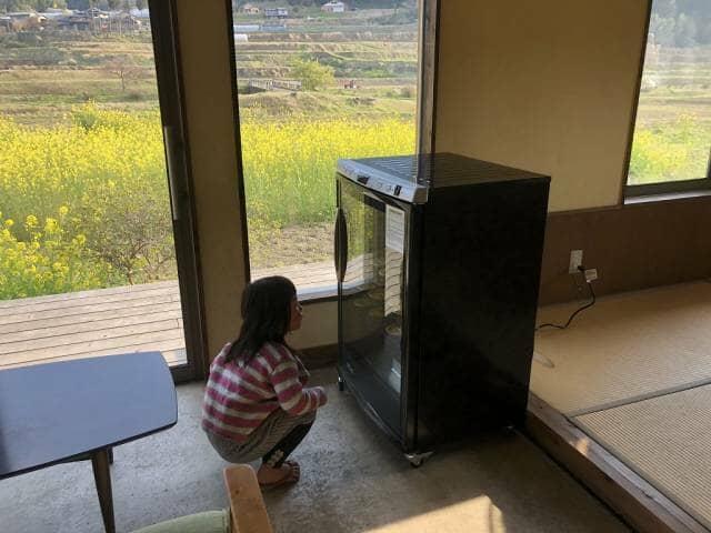 食品乾燥機を眺める少女