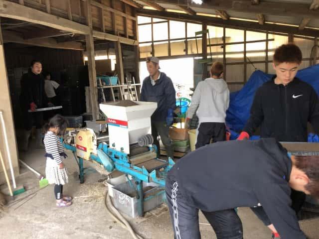 播種機でタネまき作業する人たち