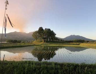 美しい田んぼ風景