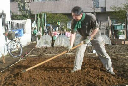 レーキで、掘り上げた深層土を畑の表面に広げます
