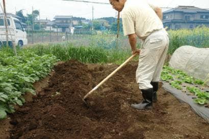 レーキで土に堆肥を混ぜ込む