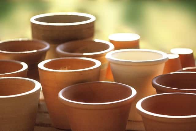 並んだ植木鉢