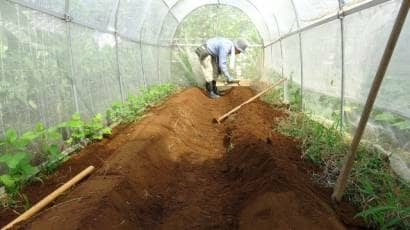 高畝を作る