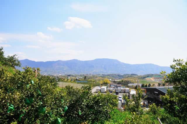 観音山からの景色