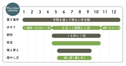 ホヤ栽培カレンダー