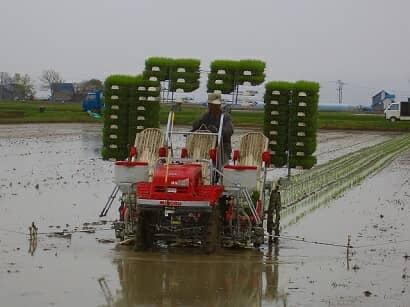ポット式の田植え機