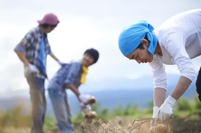 農業バイトをする若者