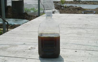ペットボトルに入ったヨモギ発酵液
