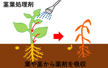 茎葉処理剤