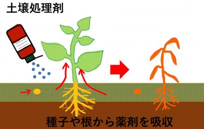 土壌処理剤