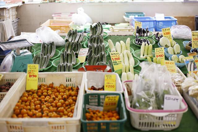 種類豊富な鎌倉野菜