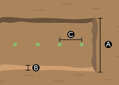 ゴーヤの栽培スペース