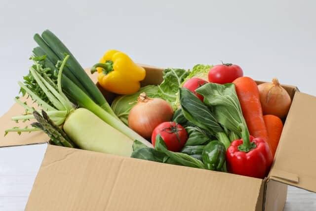 通販で届いた野菜