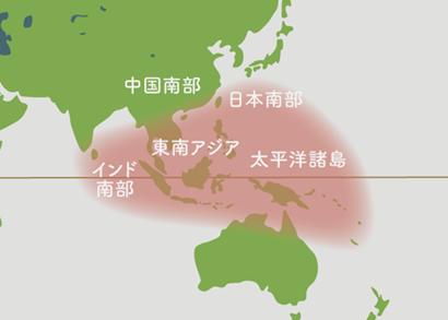 クワズイモ 原産地 地図