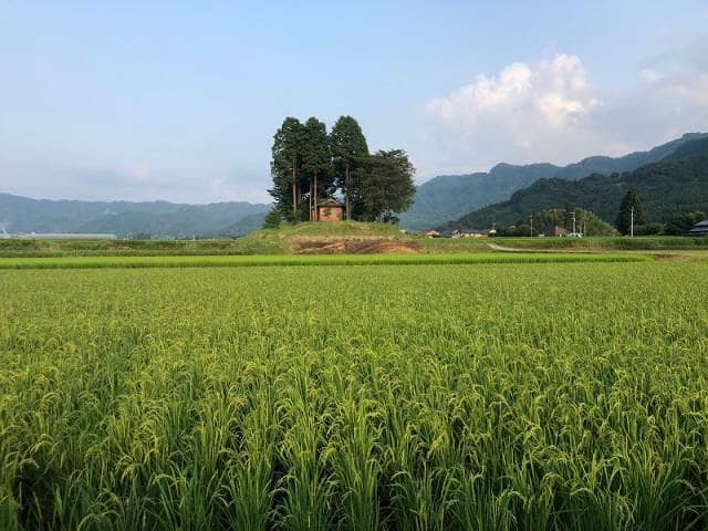 南阿蘇の田園風景