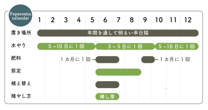 ぺぺロミア栽培カレンダー