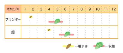 オカヒジキ栽培カレンダー