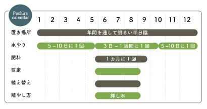 パキラ栽培カレンダー