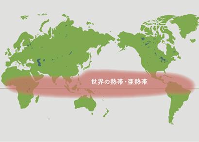 ぺぺロミア原産地地図