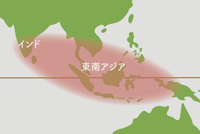 エスキナンサス 原産地地図
