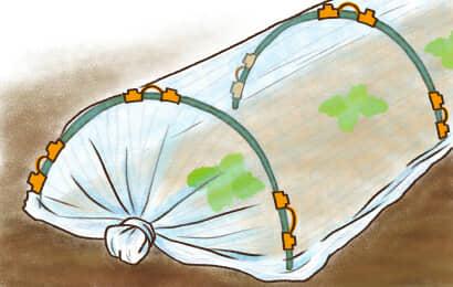 畑の防虫ネットの固定