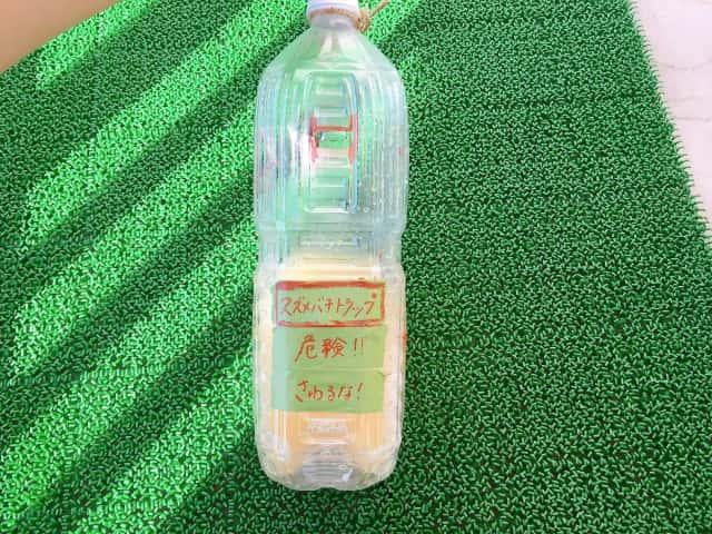 ペットボトルトラップ