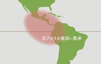 チランジア原産地地図
