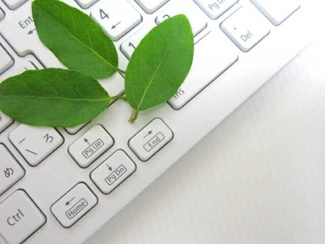 パソコンと葉3枚