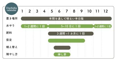 ディスキディアカ栽培カレンダー