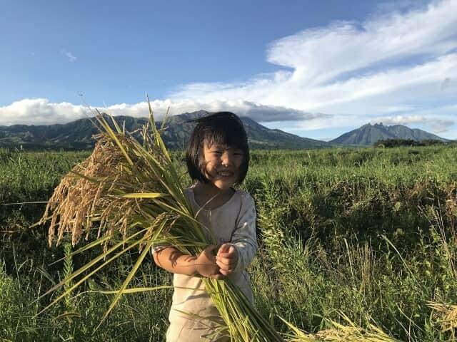 お米を持つ少女